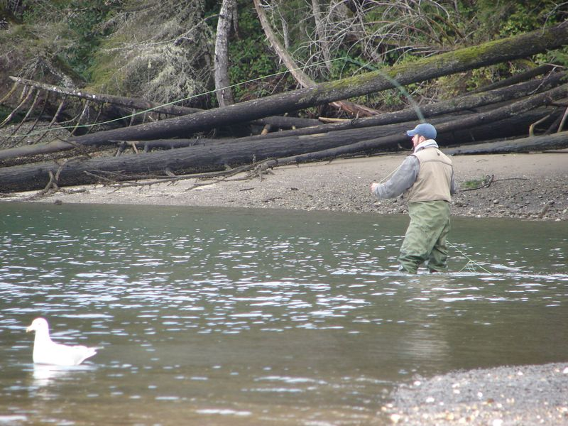 Washington state website 39 s aerial photos help find for Fishing spots finder