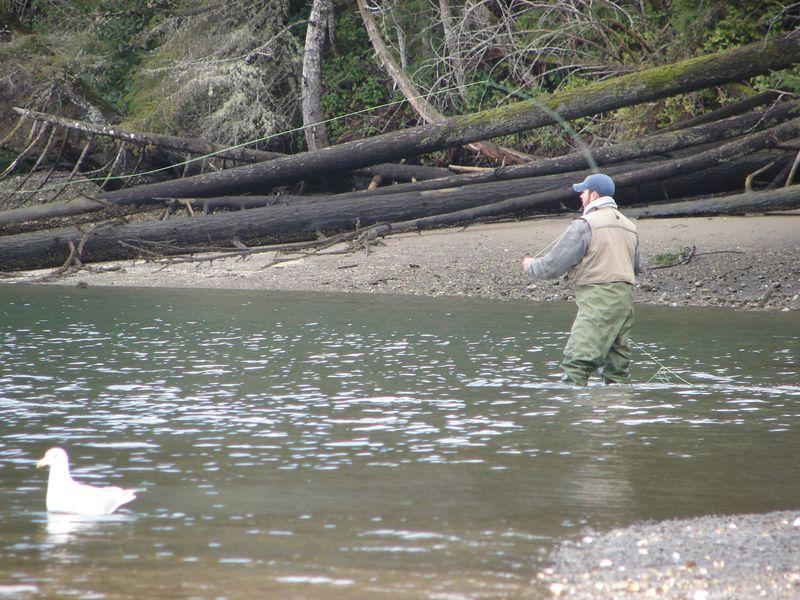 South puget sound fishing karak for Puget sound fly fishing